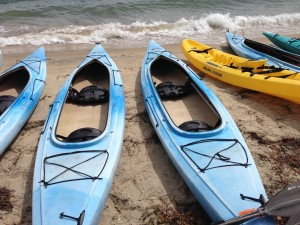 Kayaks in San Diego Harbor